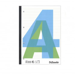 Sąsiuvinis A4/70l. ESSELTE linijomis